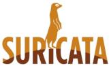 suricata100