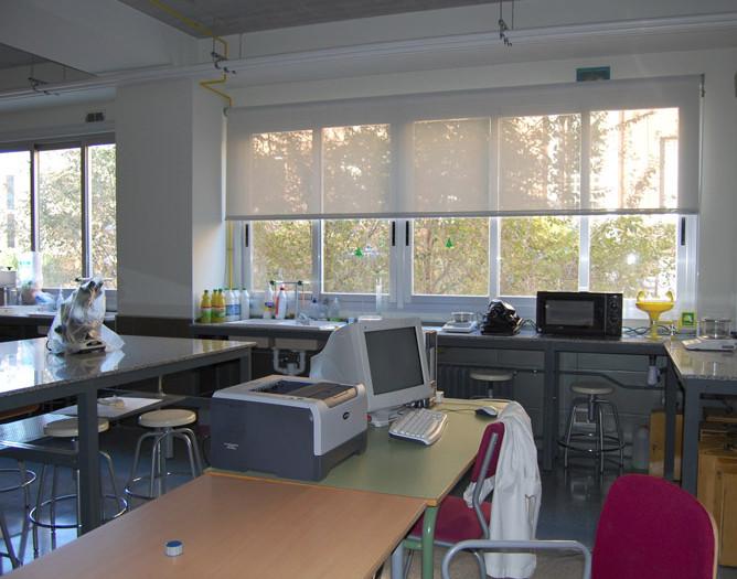 26.-Laboratori_Microbiologia