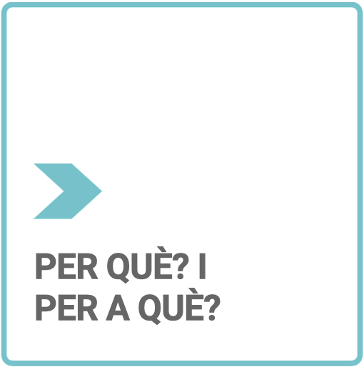 Botó_per_què2