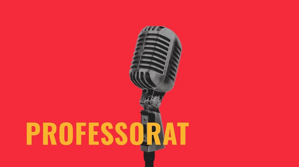 Docents: Professorat