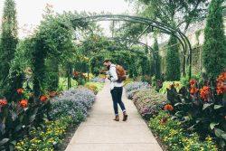 man_flower_plant_garden_colorful-58250 (1)