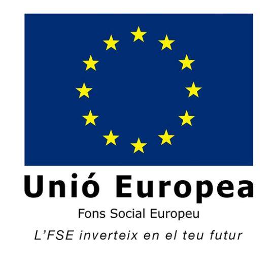 fons social europeu vertical