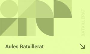 aules_bat