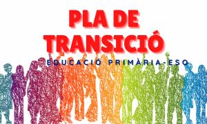 Pla de Transició