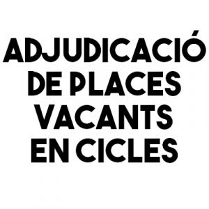 vacants_cicles_2021_2022